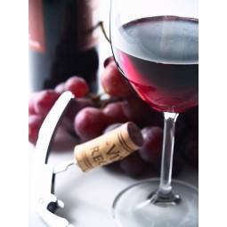 Bilet na degustację win w...